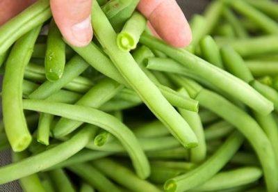 gieo hạt giống đậu đũa