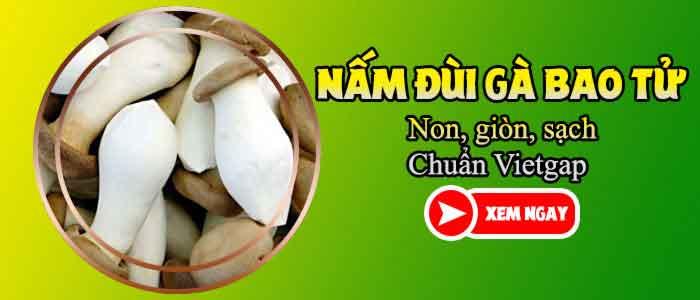 nam-dui-ga