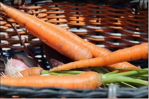 danh sách các loại rau củ quả