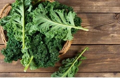 những loại rau củ tốt cho sức khỏe