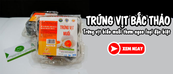 trung-bac-thao