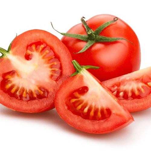 Cà chua Hà Lan quả đỏ mọng, thịt dày