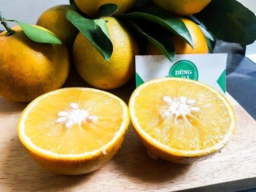 Hình ảnh cam cao phong tại Nông Sản Dũng HàHình ảnh cam cao phong tại Nông Sản Dũng Hà