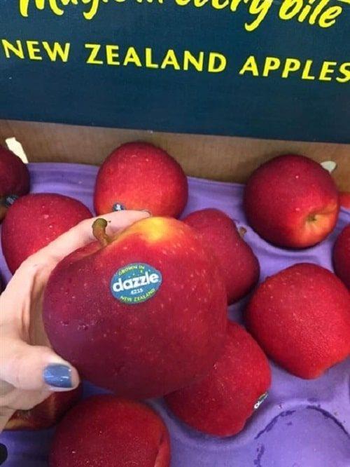 công dụng táo dazzle