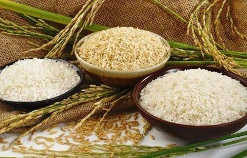So sánh gạo xát dối và gạo trắng