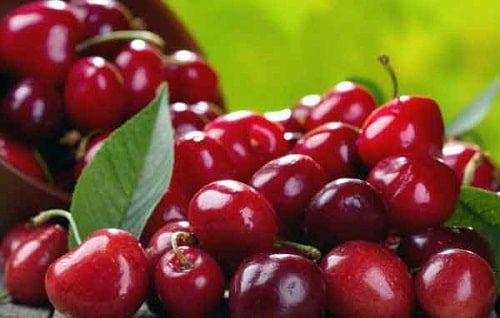 Cherry đỏ rất được yêu thích