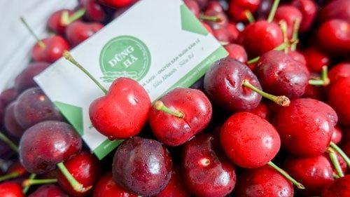 Cherry đỏ Nông Sản Dũng Hà