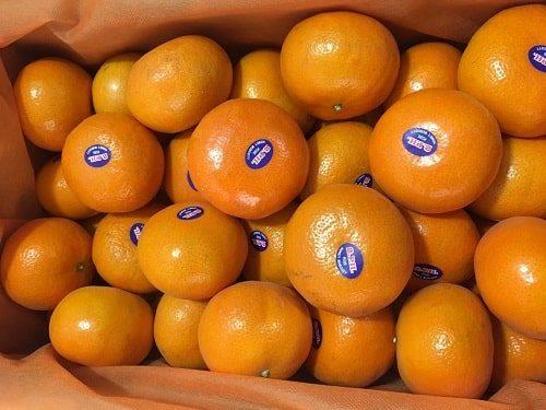 Quýt Úc là trái cây nhập khẩu được ưa chuộng tại Việt Nam