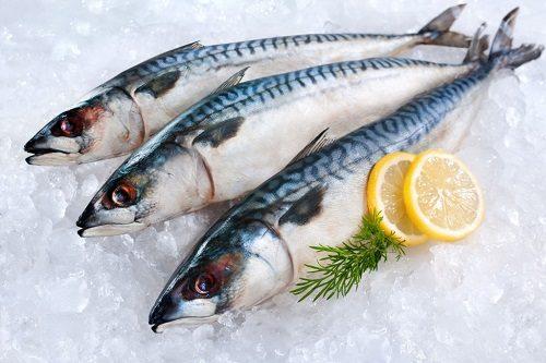 cách chọn mua cá nục tươi