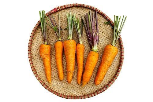 cà rốt cọng tím