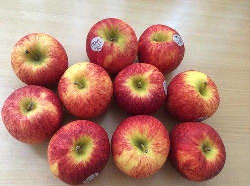 Địa chỉ mua táo envy chất lượng, giá tốt