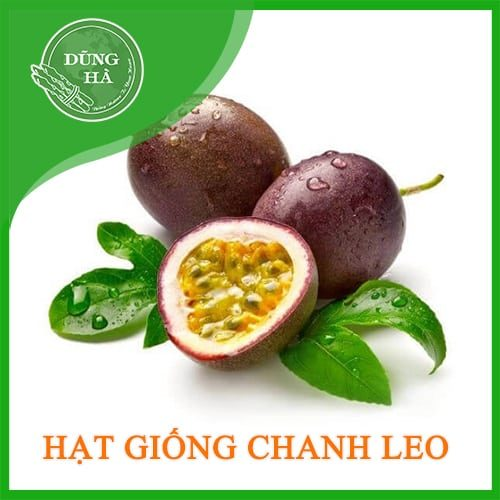hat giong chanh leo