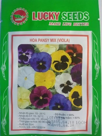 hat giong hoa pansy