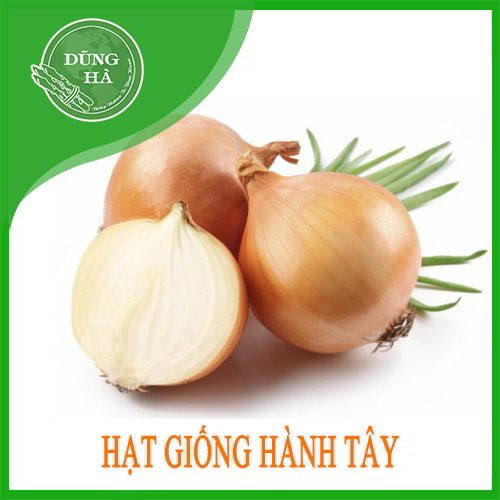 hat giong hanh tay